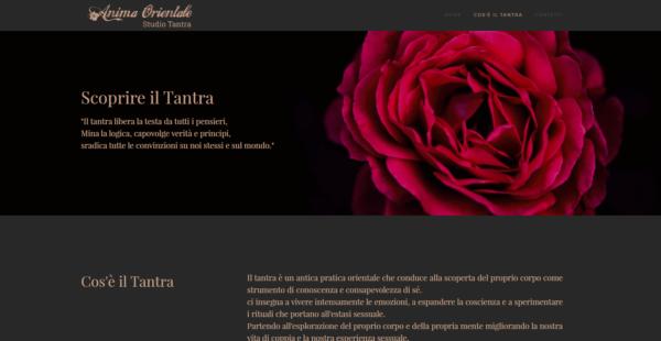Sito web per Studio Tantra