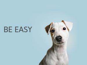 Gdmtech Web Agency: L'arte di riempire il sito web di informazioni e far scappare i clienti
