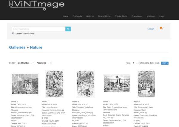 Ecommerce di vendita fotografie online